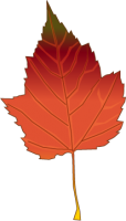 autumn_leaf1