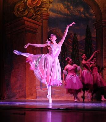 Peninsula Ballet Apprentice