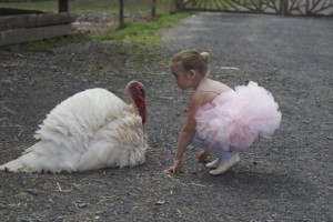Cynthia King Dance Studio student comes face to face with a turkey at the Woodstock Farm Animal Sanctuary