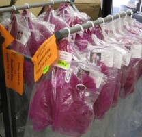 IMAGE Pink costumes hang in bags on a rack. IMAGE