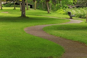 IMAGE A winding path cuts through a grassy park IMAGE